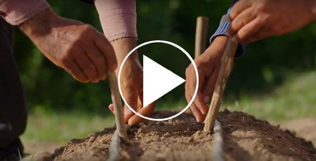 فيلم التنمية المستدامة