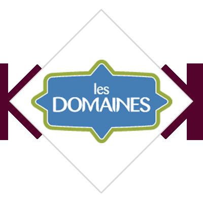 les domaines logo boutique