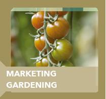 marketing gardening