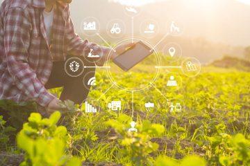 Les Domaines Agricoles à l'heure du digital